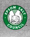 Epsom Salt Logo