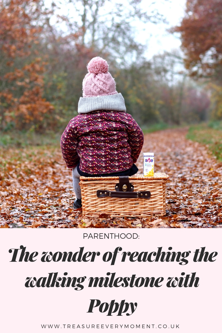 PARENTHOOD: The Wonder of Reaching the Walking Milestone with Poppy