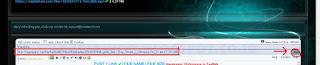 Cara Download Link Premium Rapidshare Dengan Vinaleech
