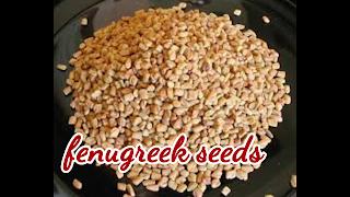 image of fenugreek seeds