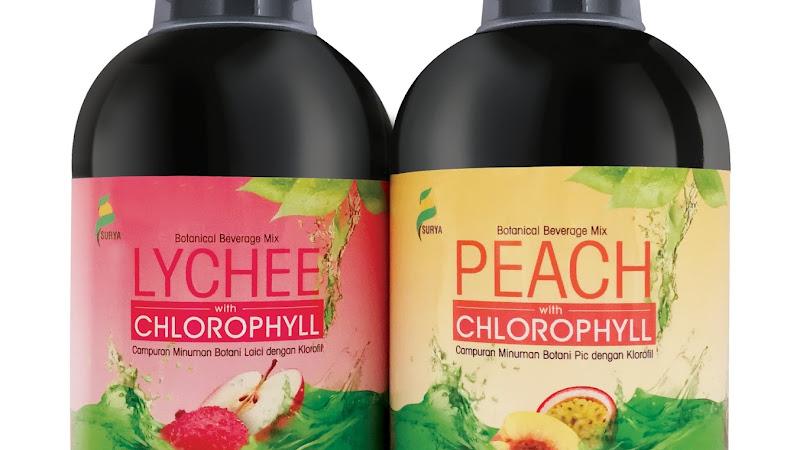 Surya Chlorophyll untuk kulit yang lebih cantik dan sihat.