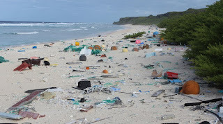 plastic pollution on remote Pacific Island, Henderson Island