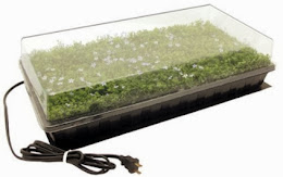 Seed Propagation Kits on Sale Now!