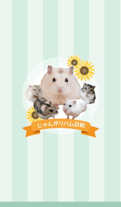 HamsterLife2