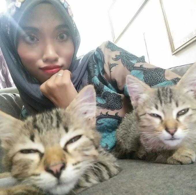 Bila Kucing Demam & Kakak Pokai :(