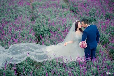 Mùa hoa oải hương ở thung lũng Bắc Hà 2