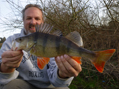 Perch 2lb 2oz (PB)