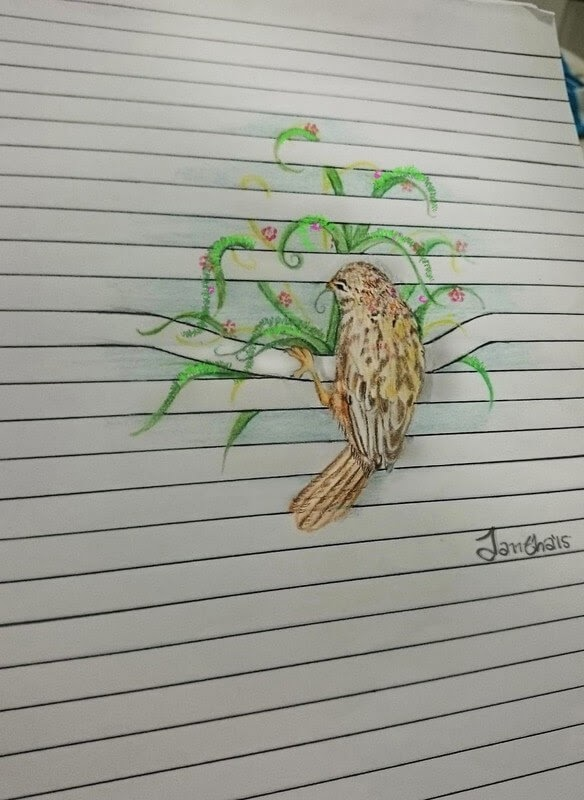09-Bird-and-Plants-Iantha-Naicker-Drawing-of-Lines-and-Animals-www-designstack-co