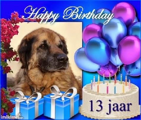 gefeliciteerd met je 13e verjaardag Gefeliciteerd Met Je 13E Verjaardag   ARCHIDEV gefeliciteerd met je 13e verjaardag