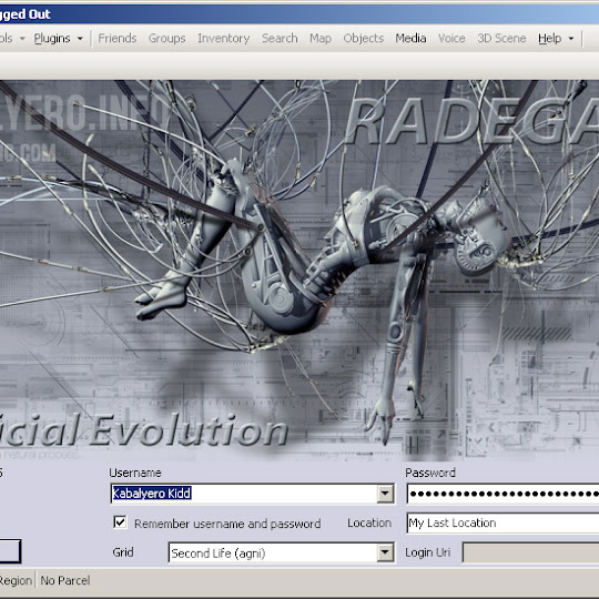 Radegast, My Current Favorite Text Based Second Life Viewer