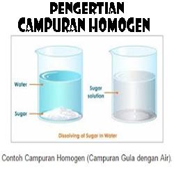 Pengertian Campuran Homogen