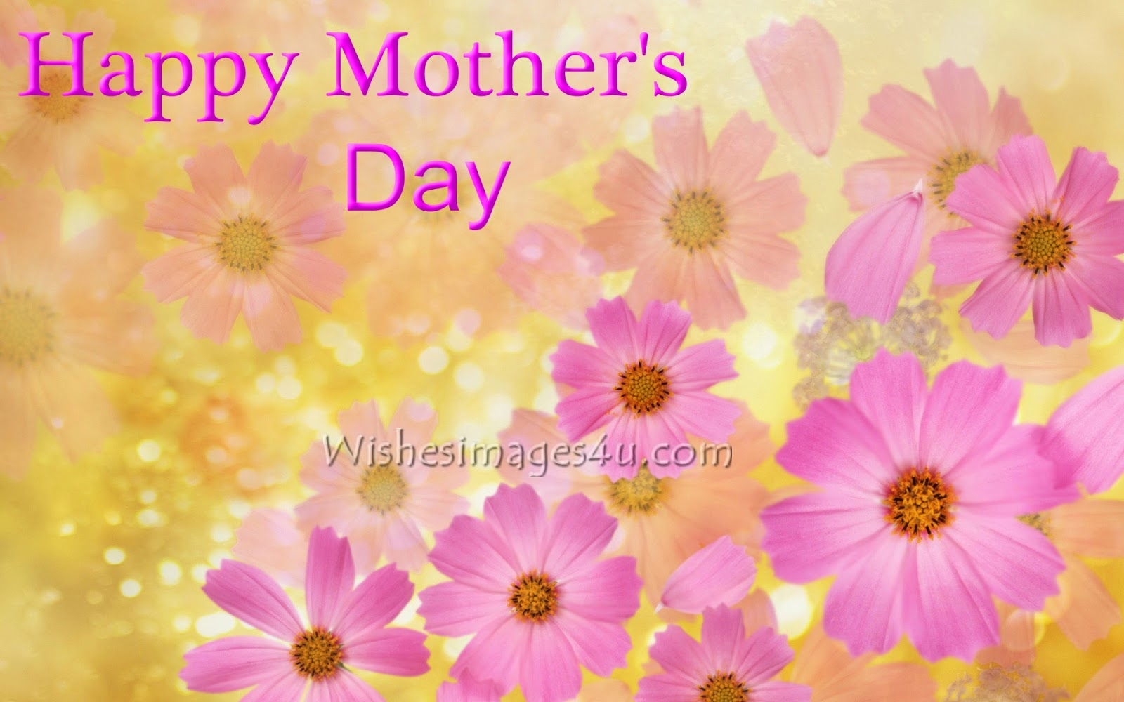 Happy Mothers Day 2017 Flowers Images Mothers Day 2017