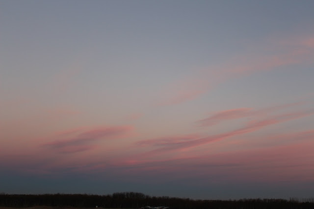 Pink morning sky