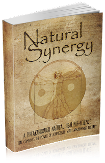 Natural Synergy - The main book