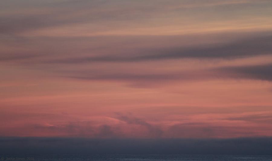 The Natural History Of Bodega Head Rose Quartz And Serenity