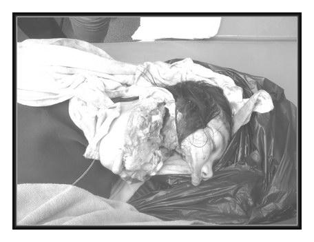 【素人熟女】エロ画像をどんどん集めろ!その148 [無断転載禁止]©bbspink.comfc2>1本 YouTube動画>2本 ->画像>1513枚