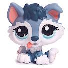 Littlest Pet Shop Small Playset Husky (#2036) Pet