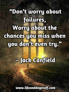 don't worry about failures quote.