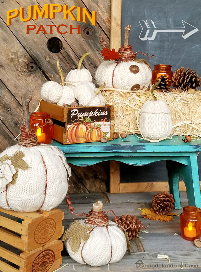 blue bench with pumpkins crate display of sweater pumpkins - barn wood background with chalkboard with arrow