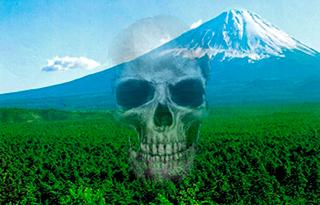 El bosque fuji de los suicidios