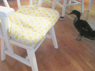 white chair and green cushion with black duck