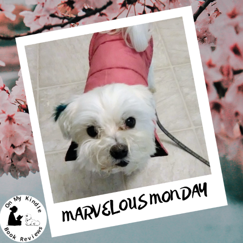 Marvelous Monday with Lexi: May 13th Edition!