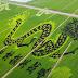 El Mundo. Impresionantes arrozales con forma de dragón y phoenix en la ciudad antigua de Suzhou.