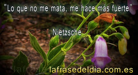 Mensajes de Friedrich Nietzsche