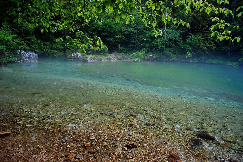 source de la rivière Kamniska bistrica dans les brumes du petit matin