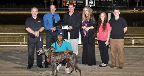 Palm Beach Dog Racing Results Images