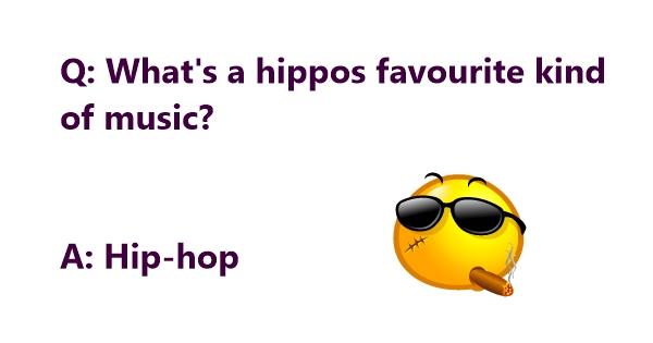 funny hippo jokes