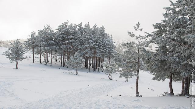 Ruta circular raquetas Guadarrama Cotos Valdesqui nieve planes madrid