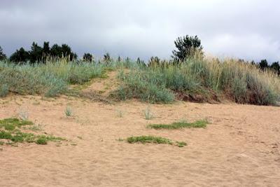 hiekkaranta