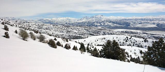 DSC00310 Panorama 1