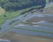 Overstroming in 2016 (bron: Waterschap Limburg). In: Inspirerende ontwikkelingen in Zuid-Nederland: initiatievenboek klimaatadaptatie. Pagina 14