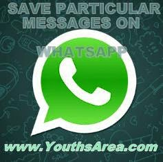 save-whatsapp-messages