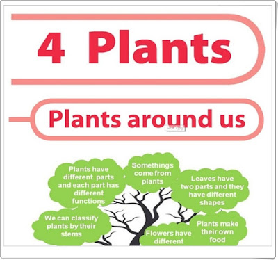 https://scienceprimary4.wikispaces.com/Unit+4+Plants