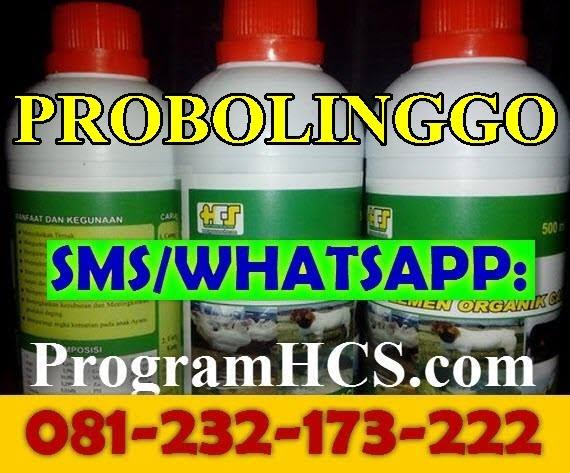 Jual SOC HCS Probolinggo