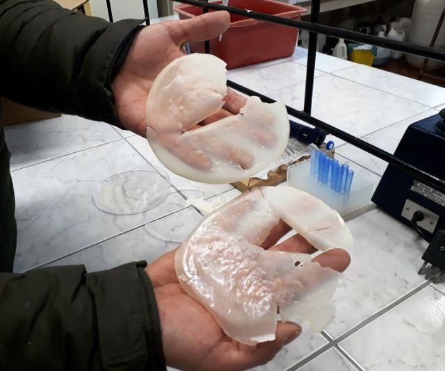 ULagos busca eliminar envoltorios plásticos en los comestibles