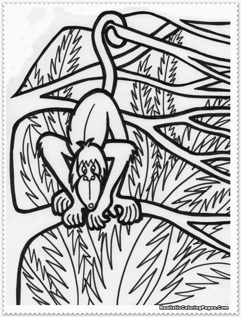 jungle animals coloring pages - photo#37