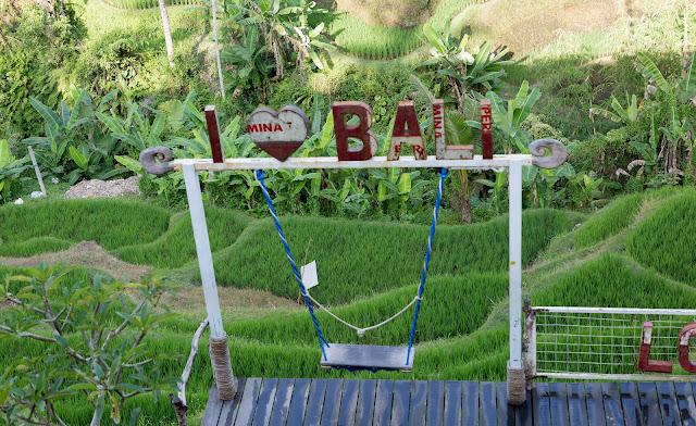 Ubud Bali Things to do Tegalalang Bali