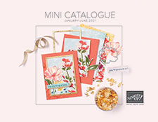 MINI catalogue till 30 June...