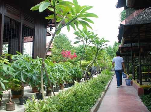 Sesuai dengan namanya Resto dan Cafe Rindang Alam, suasana resto ini memang seperti berada di alam terbuka terasa menyejukkan. Foto Efrizan/Pontianak Post