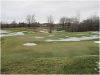 #5 Green After 1/24/2017