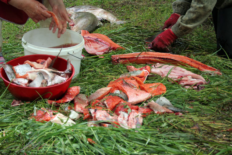 разделка-рыбы-чавычи-камчатка