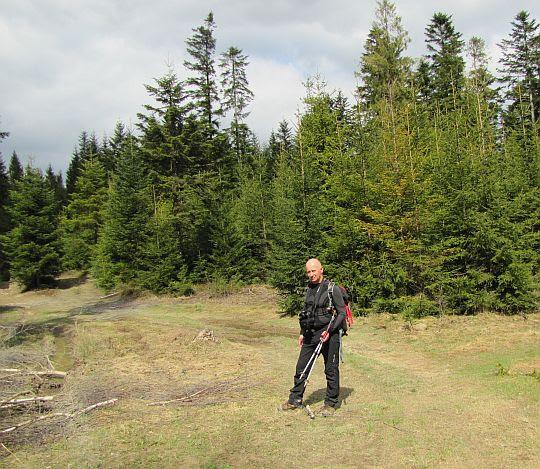 Przełęcz nad Wąwozem.
