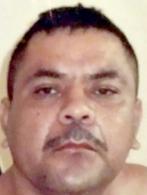Borderland Beat: Innocent victims of the Narco war in BCS