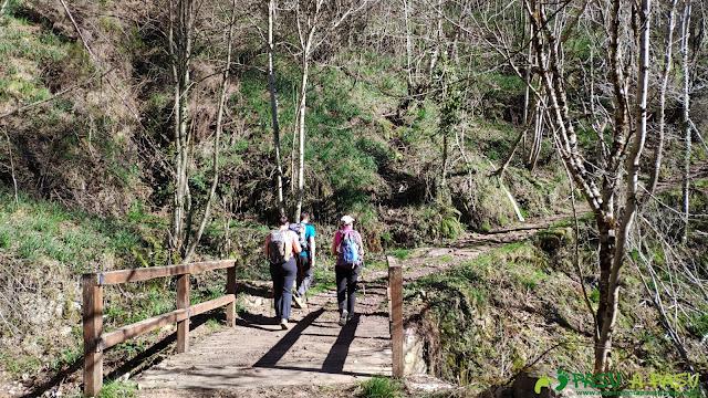 Puente sobre el Arroyo del Escoreu, Somiedo