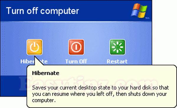 essays on windows xp