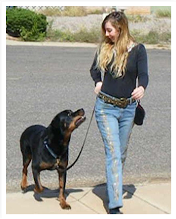 HIGHLY RECOMMENDED DOG BRAIN TRAINING COURSE
